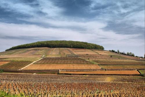 Côte de Beaune : bien loin de la gare TGV...(photo cpakmoi)